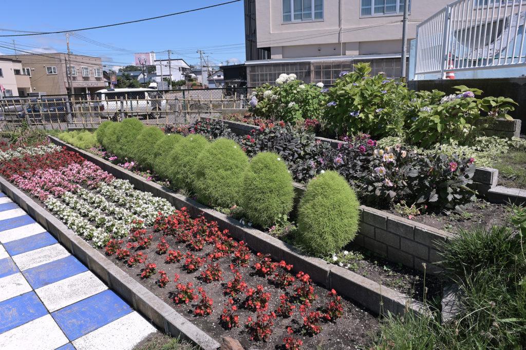 四季の花壇